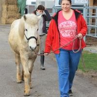 Führungskräfte-Training im Pferdespiegel 413