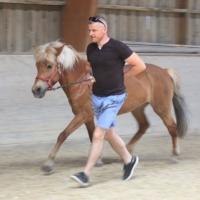 Führungskräfte-Training mit Pferden 617