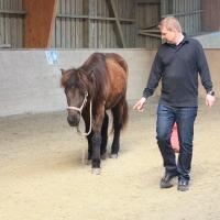 Persönlichkeits-Entwicklung und Methoden-Training mit Pferden 312